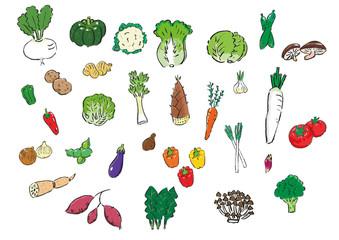 野菜の詰め合わせ