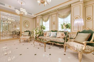 Deluxe classic living room interior