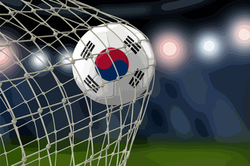 South Korean soccerball in net