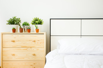cactus on a side table near a bed. Fresh design.Interior