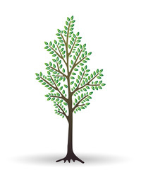 Stylized abstract young tree isolated on white background. Vector illustration. Perfect for logotype, Interior Design.