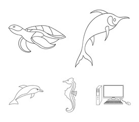 Merlin, turtle and other species.Sea animals set collection icons in outline style vector symbol stock illustration web.