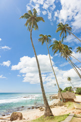 Koggala Beach, Sri Lanka - A small traditional house within palm trees at Koggala Beach