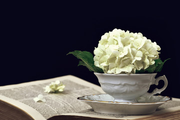 Flowers in the vintage cup on open book