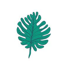 Lobed Tropical Leaf Hand Drawn Illustration