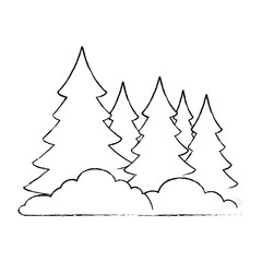 pine forest scene icon vector illustration design