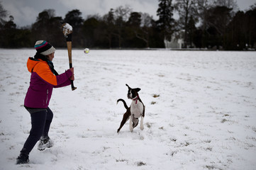 A woman plays the traditional Irish sport of hurling with Matilda the boxer dog at the Phoenix Park in Dublin