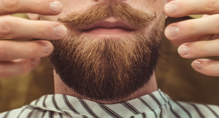 Closeup of a cropped photo of a bearded stylish men. Care beard and mustache in beauty salon.