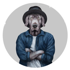 Portrait of Weimaraner with hat and shirt, hand-drawn illustration