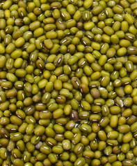 Heap of Mung beans on background