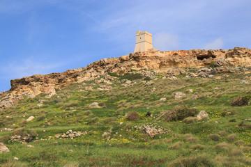 Ta' Lippija Tower, Wildblumen, Malta, Westküste