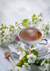 cup of tea in fine china surrounded by white spring flower blossoms on white table