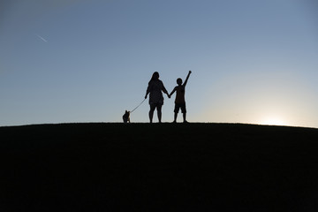 Silhouette siblings with dog standing on land against clear sky during sunset