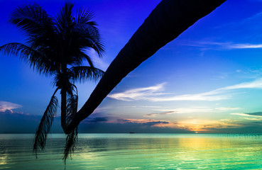 Silhouette of leaning palm tree over calm water at colorful splendid sunset in the island of Koh Phangan, Thailand. Tropical travel destination, summer paradise concept