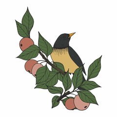 Vector illustration with a bird and apple tree branches