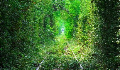 the Tunnel of Love in Romania. railway in the forest