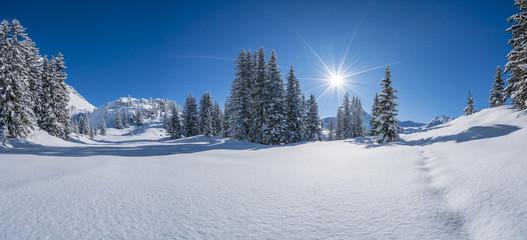 Winterpanorama - Verschneite Winterlandschaft