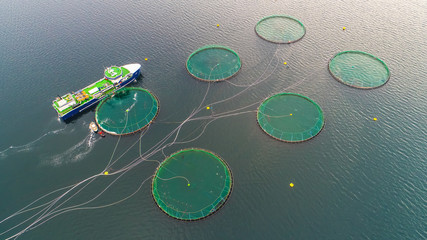 Salmon fish farm. Bergen, Norway.