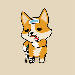 Cute cartoon character design Pembroke Welsh Corgi dog get sick and broken leg. use cooling fever patch on forehead