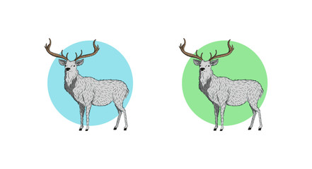 a picture of moose with a minimalist style