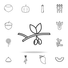 Olive icon. Set of fruits and vegetables icon. Premium quality graphic design. Signs, outline symbols collection, simple thin line icon for websites, web design, mobile app