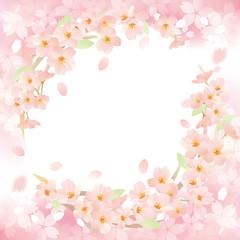 サクラリング ピンク 二