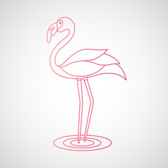flamingo logo vector illustration