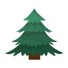 natural pine tree with branches design