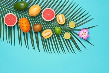 Tropical Summer Design Set. Palm Leaf and Fresh Fruits. Trendy Fashion concept. Vegan Colorful Flat lay. Creative Bright summer Blue background. Minimal