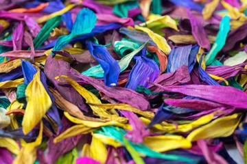 Zelfklevend Fotobehang Paradijsvogel Flower Petal Multicolor Background Texture