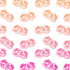 roses flower ornament decoration pattern vector illustration degrade color line image
