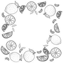 drawing Lemon & Orange background