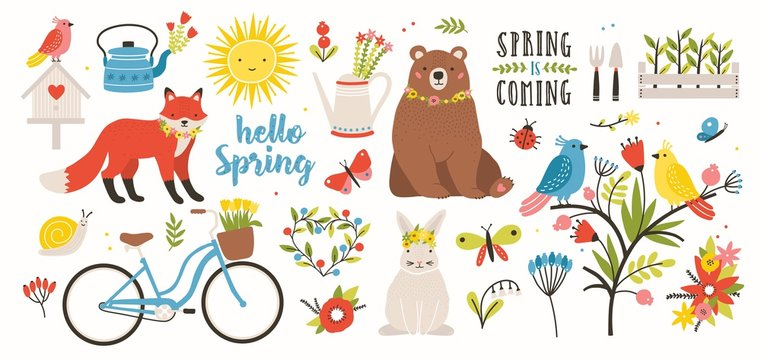 Spring set. Collection of cute animals, birds and insects, blooming flowers and floral decorations, bicycle isolated on white background. Bright colored vector illustration in flat cartoon style.