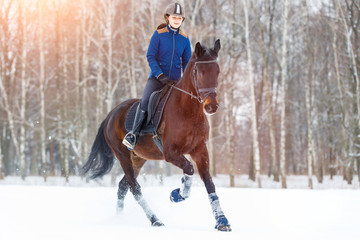 Photo sur cadre textile Equitation Young rider girl on bay horse walking on snowy field in winter. Winter equestrian activity background