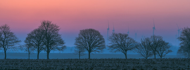 The silouette of a tree without leaves in the twilight and in front of a scenic background. Concept: weather or landscape