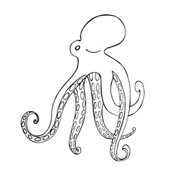 Octopus. Vector sketch  illustration.