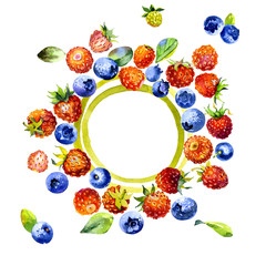 Tasty, juicy, useful, forest, meadow, field, bright berries. Red strawberries. Blueberry blue. Orange cloudberry. Watercolor. Illustration