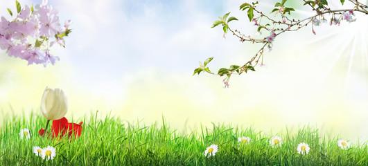 Frühlingslandschaft.