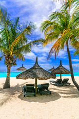 Wall Mural - relaxing tropical holidays in exotic paradise -Mauritius island