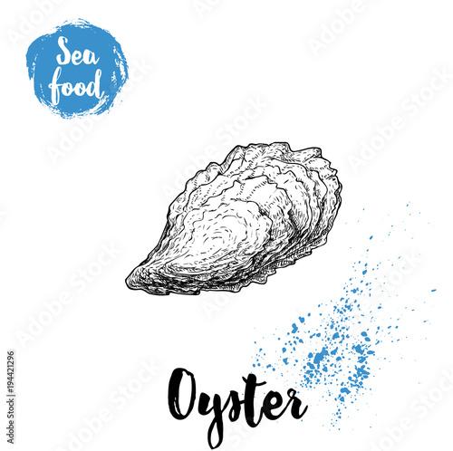 Hand Drawn Closed Oyster Shell. Seafood Sketch Style Illustration. Fresh  Marine Mollusk.
