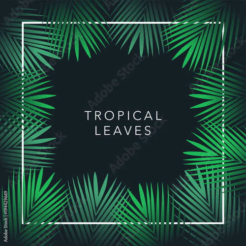 green palm tree vector leaf and text on black background jungle