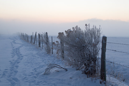Barbed wire fencing covered in winter snow