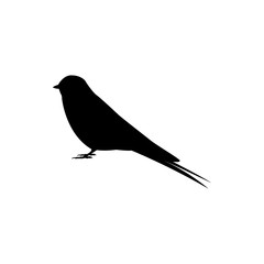 swallow bird vector silhouette