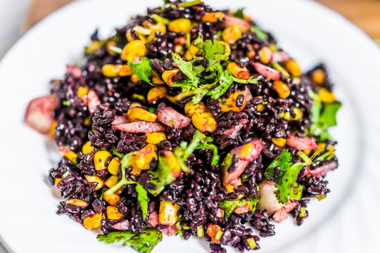 Macro closeup of forbidden Chinese black rice dish with corn, vegetables, onions, cilantro on plate isolated
