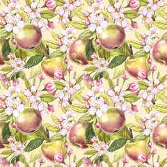 Apple flowers hand drawn seamless pattern watercolor illustration.