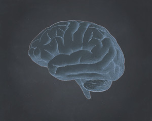 Brain illustration on blackboard BG style