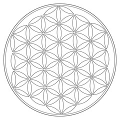 Sacred Geometry Vector Symbol: Flower of Life, also known as The Pattern of Creation. Flower and Seed of Life symbols represent patterns of life as they emerge from the Creator.