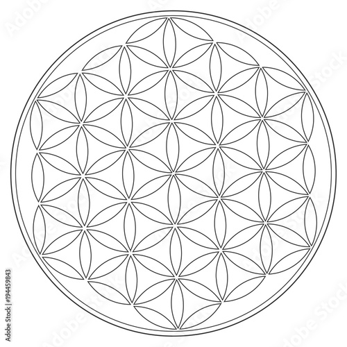 Sacred Geometry Vector Symbol: Flower of Life, also known as
