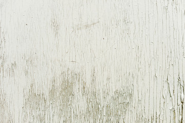 Textured background wooden surface painted with water-emulsion paint with small cracks in time....