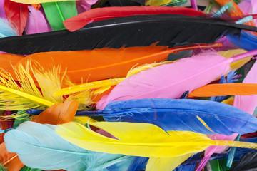 Zelfklevend Fotobehang Paradijsvogel Colorful feathers. Parrot colors duck feather texture.